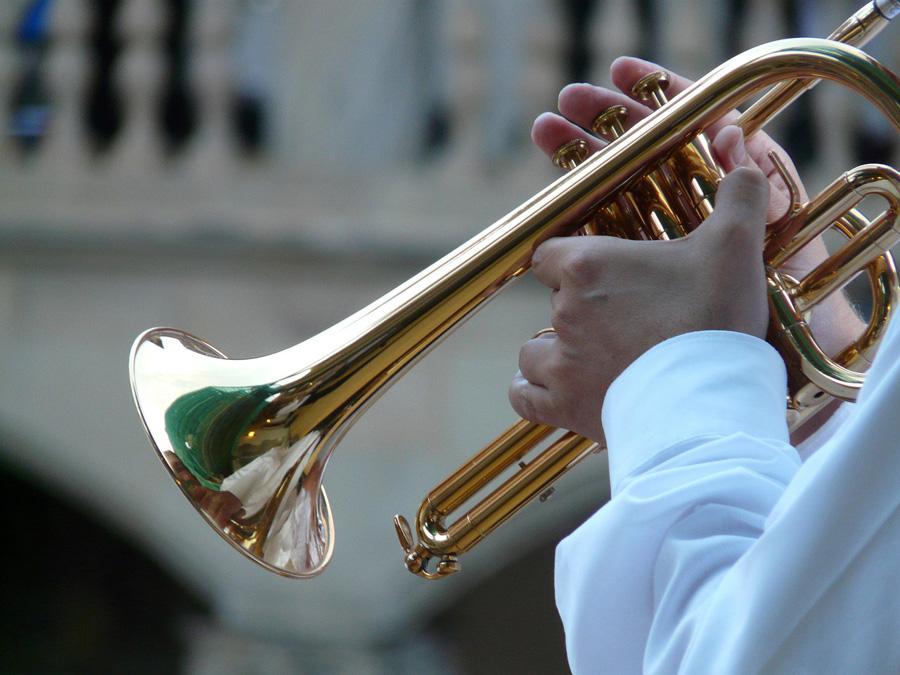 Temperamenttinen trumpetti, Voimapuu