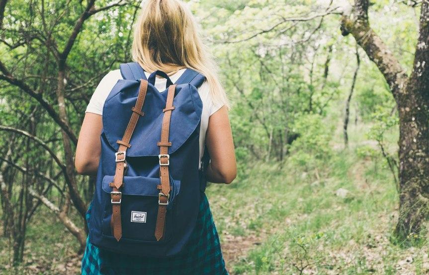 Geokätköily – liikuntaa, seikkailua ja nähtävyyksiä, Voimapuu
